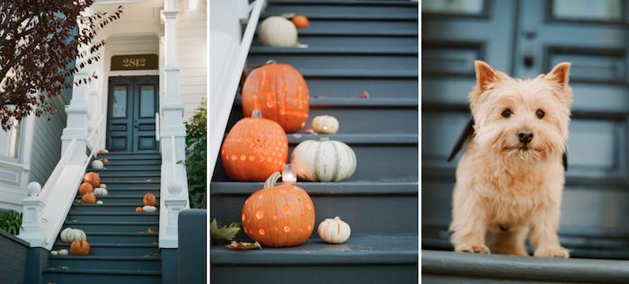DIY Pattern Play Pumpkins