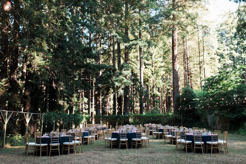 sara-alan-wedding-688-zf-4866-96332-1-032